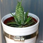 Hanging Succulent Planter – The Home Depot Gift Challenge