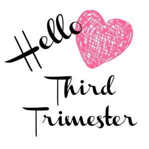 3rd Trimester Bumpdate - www.refashionablylate.com