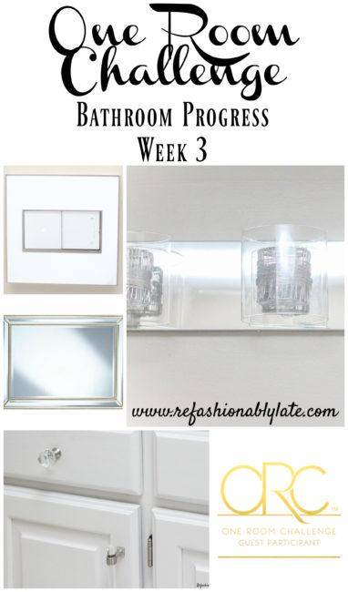 orc-bathroom-progress-week-3